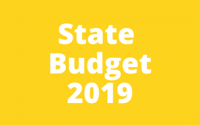 State Budget submission 2019